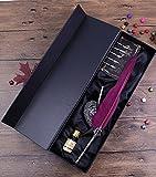 Ecvision Antique Plume stylo en métal nibbed écriture stylo de calligraphie avec Lot de plumes (Vin rouge)