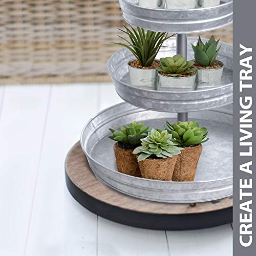 DELBRIO - 3 Tier Serving Tray (Jumbo 17'' Base) Rustic, Decorative Galvanized Metal | Home Farmhouse Decor & Display Stand | Coffee, Fruit & Veggie, Party Bar Serving Tray, Cupcake Stand | FOOD SAFE by DELBRIO (Image #7)
