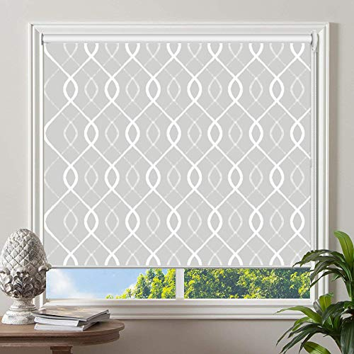 PASSENGER PIGEON Blackout Window Shades, Premium UV Protection Water Proof Custom Roller Blinds, Printed Picture Window Roller Shade, 46
