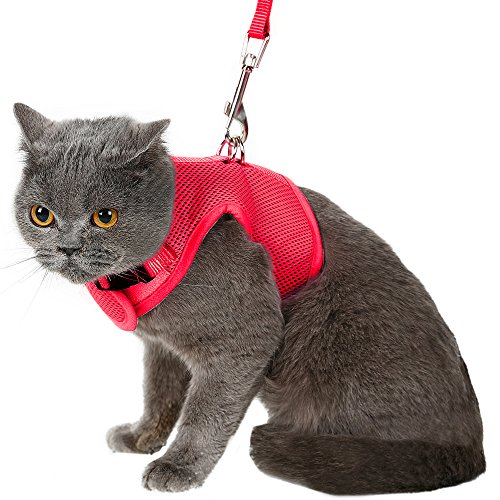 (Escape Proof Cat Harness with Leash - Adjustable Soft Mesh - Best for Walking Red Large)
