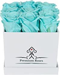 Valentine's Day Collections| Roses with Longevity (Small, Light Blue)
