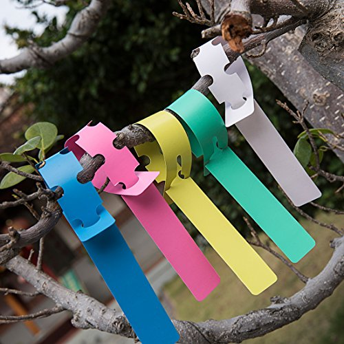 Premium Colour (Premium Nursery Garden Labels -500PCS 5 Colors - Waterproof Tag Plastic Plant Markers)