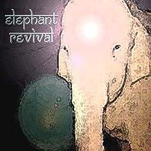Elephant Revival