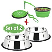 Amazon Lightning Deal 78% claimed: Lally Pet 32-Ounce Stainless Steel Dog Bowl with 7-Inch Silicone, Bottle Holder and Clip, Set of 2