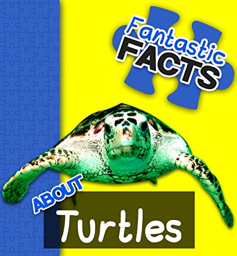 Fantastic Facts About Turtles: Illustrated Fun Learning For Kids