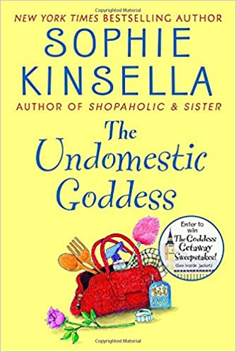 Image result for the undomestic goddess