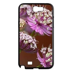 Beautiful grassland Custom Cover Case with Hard Shell Protection for Samsung Galaxy Note 2 N7100 Case lxa#456194 WANGJING JINDA