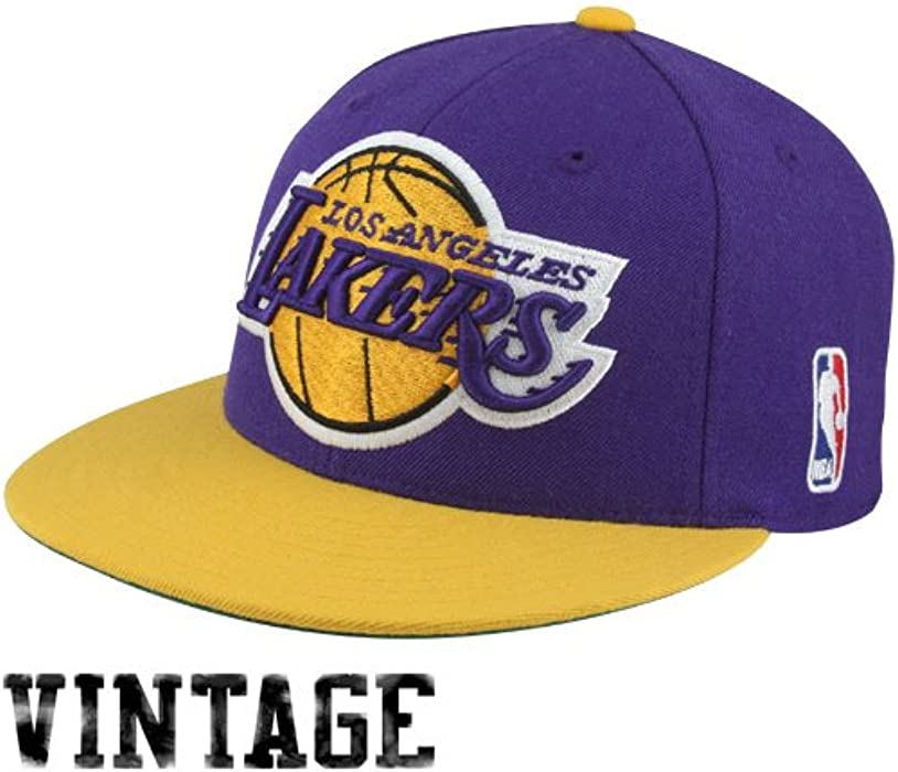 49cec88beb3fb NBA Mitchell   Ness Los Angeles Lakers Vintage Logo Two-Toned Fitted Hat -  Purple
