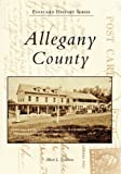 Allegany County, Albert L. Feldstein, 0738543810
