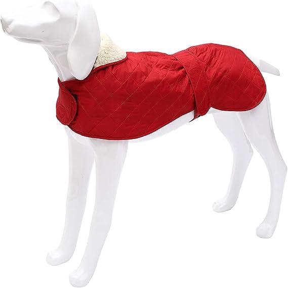 Abrigo de Invierno para Perro con Forro Polar c/álido Impermeable con Bandas Ajustables para Galgos Morezi Chaqueta para Perro Langostas y Marionetas