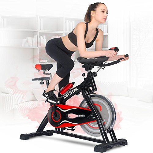 SWM Indoor Cycling Bikes Spin Bikes with LCD Monitor and Free Bottle Trainer Bicycle Stationary Fitness Equipment (Black & Red)