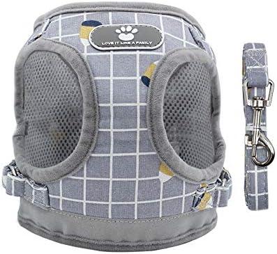 r/églable poign/ée confortable respirante contr/ôle facile pour chiens de petite et moyenne taille r/éfl/échissante Carledon Harnais anti-traction pour chien avec 2 anneaux en m/étal souple