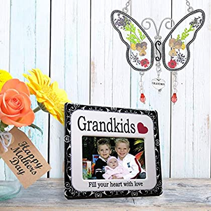 BANBERRY DESIGNS Grandkids Frame and Sun Catcher – Butterfly Suncatcher with Pressed Flower an...