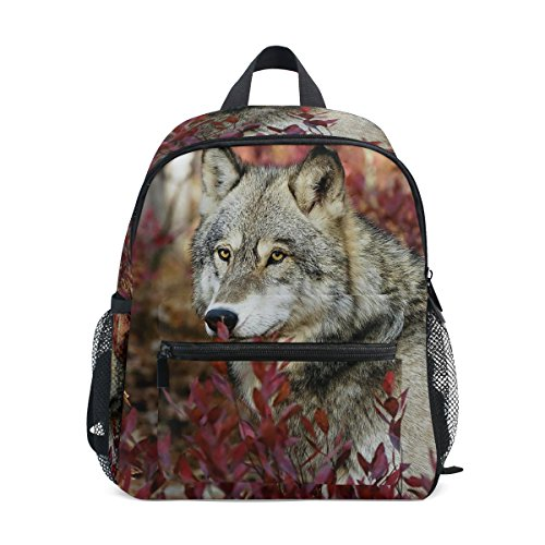 Kids nbsp;Backpack nbsp;Bag nbsp;Toddler Boys ZZKKO Animal nbsp;School nbsp;for nbsp;Book Wolf Wild nbsp;Girls qSg6pt