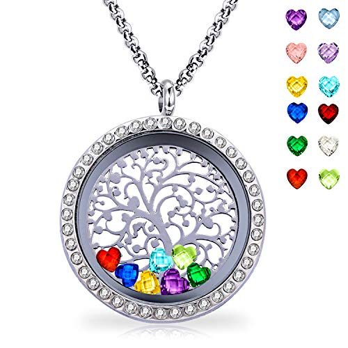 (Ronglai Jewelry Floating Locket Pendant Necklace Heart Crystal Family Tree of Life Necklace All Birthstone Charms Include (CZ Locket Necklace))