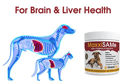 Maxxisame Sam E Liver Supplement For Dogs Cats Hepatic Liver