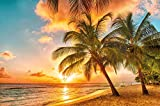 Photographic Wallpaper Barbados for mural decoration, sunset Caribbean Sea Palm Beach summer Island Sunset Dream Holiday I paperhanging poster wall decor by GREAT ART (210 x 140 cm / 82.7 x 55 Inch)