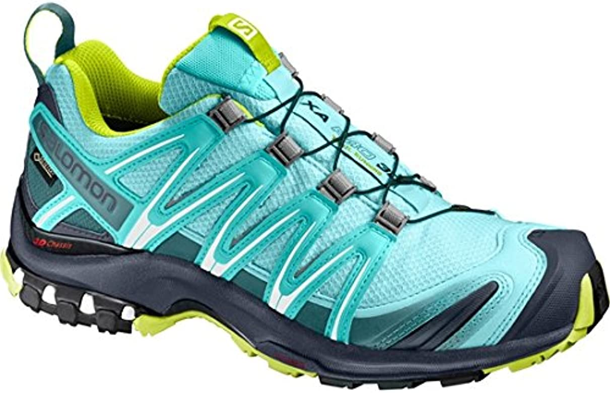 Salomon XA Pro 3D GTX W Traillaufschuhe, Blue/Green, 6 UK: Amazon.es: Deportes y aire libre