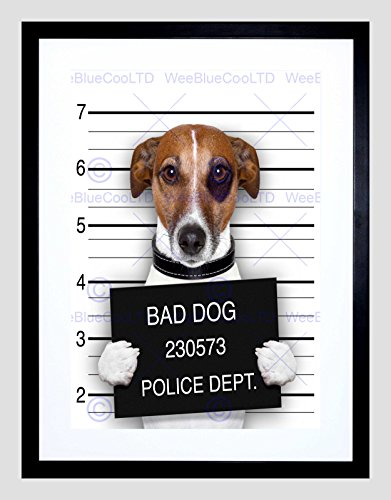 Jack Russell Dog Mugshot Police Bad Black Framed Art Print Picture ()