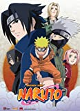 Great Eastern Entertainment Naruto Leaf Village Group Wall Scroll, 33 by 44-Inch