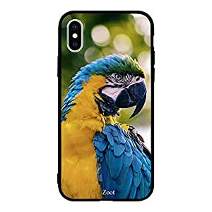 iPhone XS Max Yellow Blue Parrot