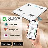 Arboleaf Digital Scale, Bluetooth Smart Scale