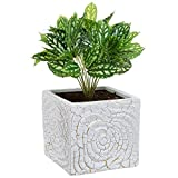 6 Inch Decorative Spiral Design Square White Ceramic Plant Flower Container Pot / Windowsill Planter