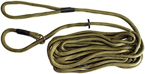Dog Field Training Lead Exercise