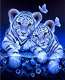 21secret 5D Diamond Diy Painting Full Drill Handmade Cute Two White Tiger and Butterfly Cross Stitch Home Decor Embroidery Kit