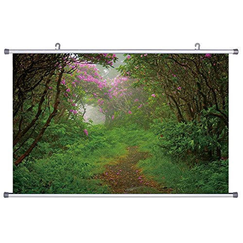 art-print-wall-scroll-poster-rhododendron-forest-trail-24x32-inches