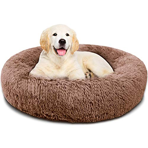 Covacure Dog Bed for Small Dogs – Comfortable Small Round Dog Bed & Ultra Soft Washable Calming Dog Bed and Cats