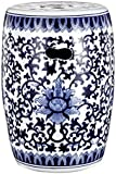 Blue u0026 White Ceramic Garden Stool ...  sc 1 st  Amazon.com & Amazon.com : 18