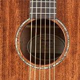 Breedlove PURSUIT DREAD MAH Pursuit Dreadnought Mahogany Acoustic-Electric Guitar Mahogany Top