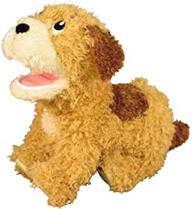 Lucky Dog Toy Commands