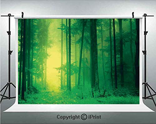 Mystic Decor Photography Backdrops Fantasy Springtime Forest Tall Trees with Magical Light Fairytale Twilight Art Print,Birthday Party Background Customized Microfiber Photo Studio Props,8x8ft,Green -