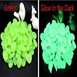 ASIBT 500 Pcs Glow in the Dark Stones,Garden Pebbles Rocks for Outdoor, Walkway, Window, Yard Grass, and Fish Tank Decoration (Green)