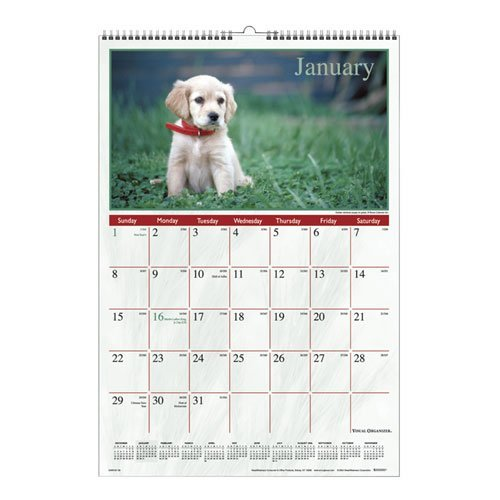 Visual Organizer Products - Visual Organizer - Puppies Full-Color Photographic Monthly Wall Calendar, 15-1/2 x 22-3/4 - Sold As 1 Each - A beautiful full-color image of an adorable puppy each month. - Includes current year reference calendar bonus page. - (Monthly Puppies Calendar Wall Photographic)