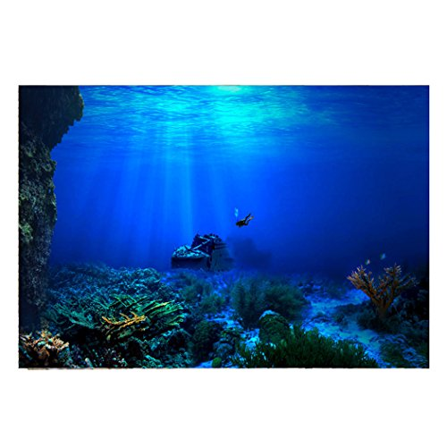 Fantasy Star Aquarium Background Undersea Exploration Diving Explore Shipwreck Easy to Apply and Remove Fish Tank Wallpaper Sticker Background Decoration 24'' x 16'' by Fantasy Star