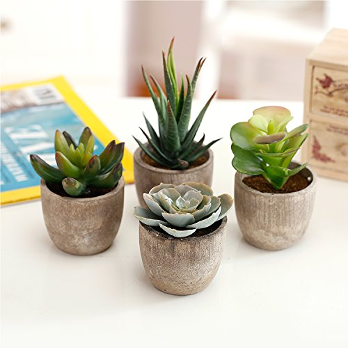 Assorted Decorative Artificial Succulent Plants