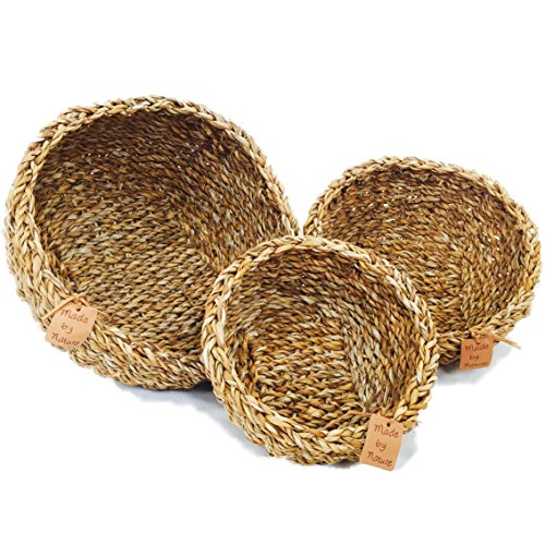 "Natural Fruit Basket - The Made by Nature Beach House Bowls, Set of 3, 8, 10""Diameter (20, 25,30D cm) by Whole House Worlds"