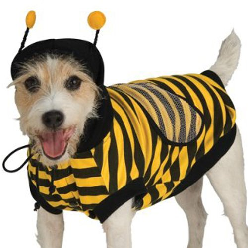 Bumble bee dog costume small