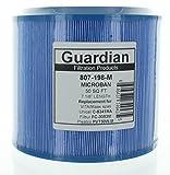 Guardian Pool Spa Replaces PMA45-2004-R C-8341