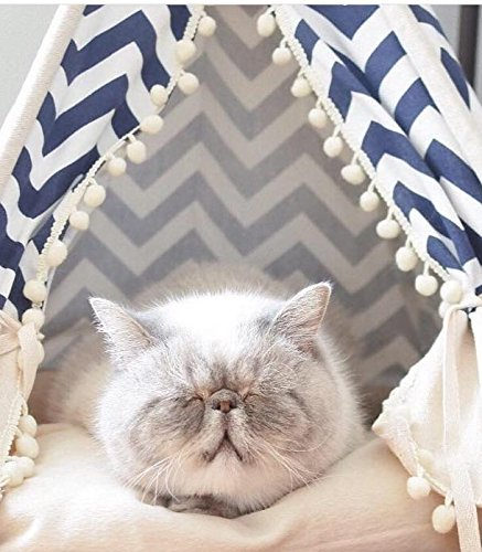 THAI Pet Teepee Handmade Size S_38x38x70 cm TP005 Pet teepee, Dog teepee, Cat teepee, Cat bed, Dog bed, Dog tent and Dog house FREE pet toy for all purchase! Pet toy made from 100% cotton and ha by WilaaMalin (Image #2)
