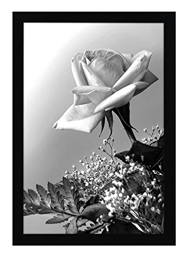 12x18 Black Poster Frame with Plexiglass Front By Americanflat - Designed to Display Vertically or Horizontally on a Wall - Mounting Hardware Included