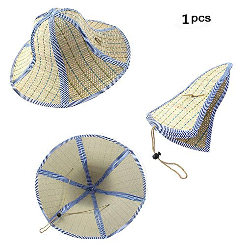 Feisuo 1 Pcs Summer Beach Boater Straw Hat,Chinese Style Foldable Straw Sun Cap Visor Hat for Mens and Women