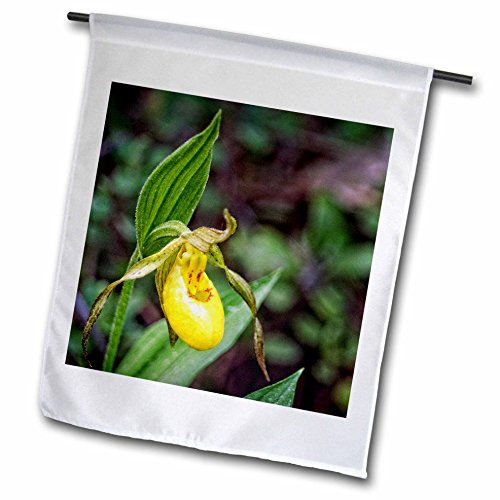 Boehm Photography Flower - Yellow Ladys Slipper Flower - 12 x 18 inch Garden Flag (fl_245579_1)
