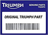 Triumph Street Triple Engine Service Kit T3990021