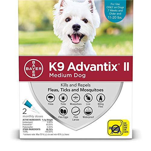 Ax Advantixii Dog 2mon 11-20lb Ltb