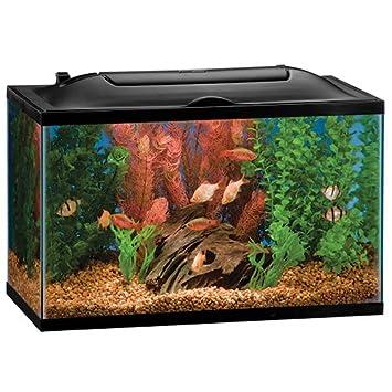 .com : marineland 16336 bio, wheel led aquarium kit, 10 gallon ...