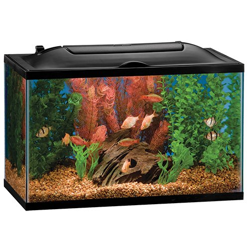 Marineland 16336 Bio, Wheel LED Aquarium Kit, 10 gallon - Bio Wheel Aquarium Kit